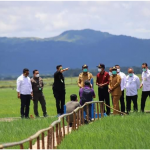 MONITORING KEMAJUAN PROGRAM FOOD ESTATE DI KABUPATEN SUMBA TENGAH